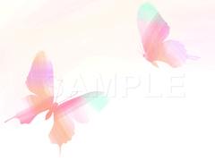 No1067 おしゃれな蝶のイラスト