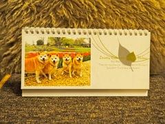 2018年 柴犬カレンダー