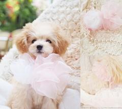 Ice chou-chou♪☆Corolle de l'ange☆Rose&White♪
