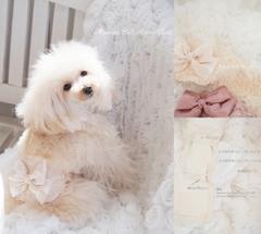 Manner Belt Rose Allure(マナーベルトロゼアリュール)♪☆Pink Beige/Ecru☆