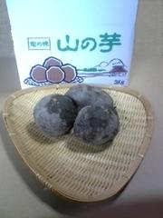 丹波篠山特産 山の芋   1Kg(予約限定品)