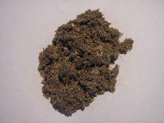 【稀少】Helichrysum impepho 3g (スマッジングハーブ)