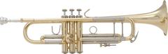 V.Bach 180ML37GLトランペット・ラッカー