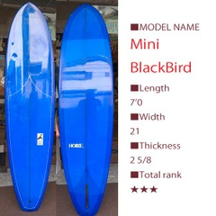 Mini Black Bird kk2049