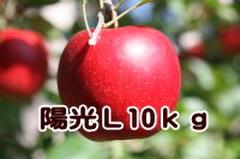 陽光 L 10kg
