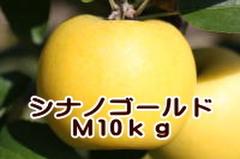 シナノゴールド M 10kg