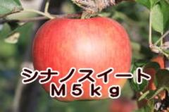 シナノスイート M 5kg