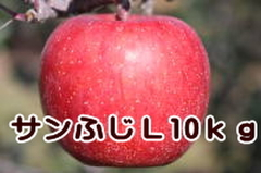 サンふじ L 10kg
