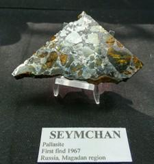 セイムチャン・パラサイト隕石24,9G(ロシア・マガダン産)