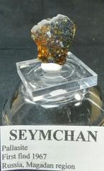 セイムチャン・パラサイト隕石3,4G(ロシア・マガダン産)