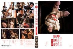 和とみやびの緊縛館 Vol2