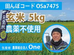 生きもの元気米(農薬不使用)田んぼOSa7475の玄米5kg コシヒカリ
