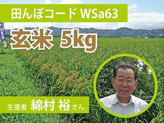 生きもの元気米(減農薬)・田んぼWSa63の玄米5kg コシヒカリ