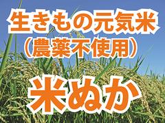 米ぬか 700g(原料:生きもの元気米(農薬不使用)のみ)