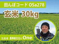 生きもの元気米(減農薬)・田んぼOSa278の玄米30kg コシヒカリ