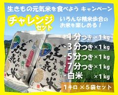 チャレンジセット・生きもの元気米(コシヒカリ)