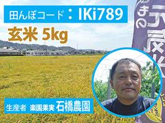 生きもの元気米(農薬不使用)田んぼIKi789の玄米5kg コシヒカリ
