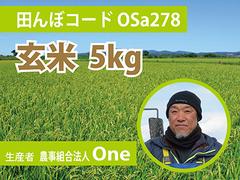 生きもの元気米(減農薬)・田んぼOSa278の玄米5kg コシヒカリ