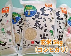 カーボン・オフセット 生きもの元気米(玄米)5kg コシヒカリ