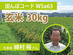 生きもの元気米(減農薬)・田んぼWSa63の玄米30kg コシヒカリ