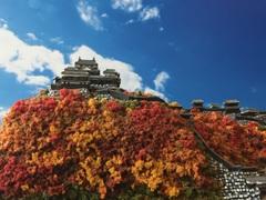 伊予松山城 お城 ジオラマ 完成品