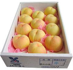 【夏のフルーツギフト】白桃11玉約3kg