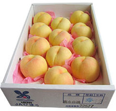 【夏のフルーツギフト】白桃5玉約1.5kg