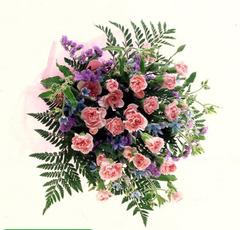 スプレーカーネーションの花束(大)