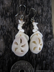 White Cowry Sukashi Pierce No,15