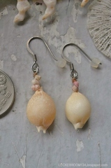 Chick-pea Cowry pierce No,2