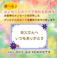 【ギフトご注文者様限定】選べる!メッセージカード