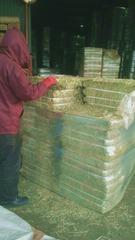 うさぎの牧草 チモシー1番刈り 1kg