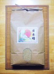 越田さんちの自然栽培米「日本晴」(5kg、玄米)
