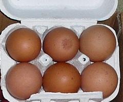 平飼い卵 (6個入り)
