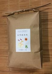 【自然栽培】コシヒカリ 玄米 1.5キロ入り