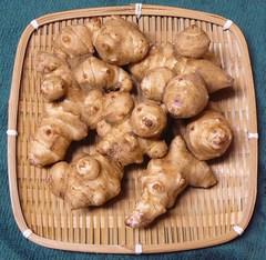 自然栽培 菊芋