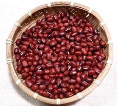 自然栽培 小豆