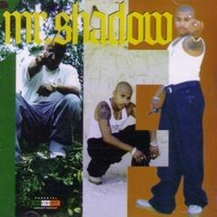 Mr.Shadow / Thirteen