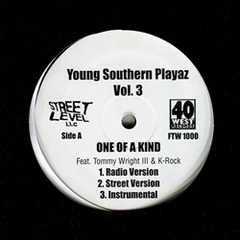 Young Southern Playaz Vol.3