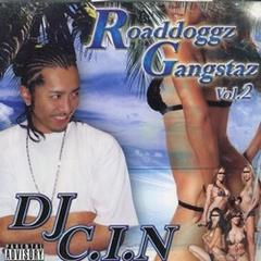 DJ C.I.N / Roaddoggz Gangstaz Vol.2