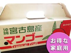 アップルマンゴー お得な家庭用4kg