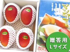 アップルマンゴー Lサイズ 2kg