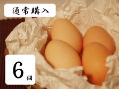【通常購入】うこっけい卵【6個入り】