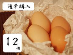 【通常購入】うこっけい卵【12個入り】