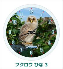 オリジナル壁掛時計「フクロウ ひな 03」 2017