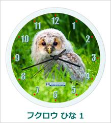 オリジナル壁掛時計「フクロウ ひな 01」 2018
