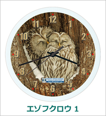 オリジナル壁掛時計 「エゾフクロウ 01」 2013