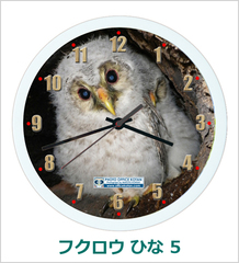 オリジナル壁掛時計「フクロウ ひな 05」 2011
