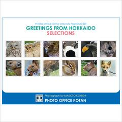 ポストカードセット「GREETINGS FROM HOKKAIDO SELECTIONS」2014
