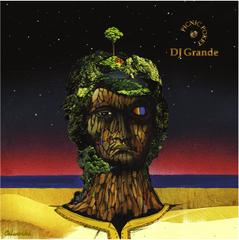 DJ Grande / Picnic Pocket